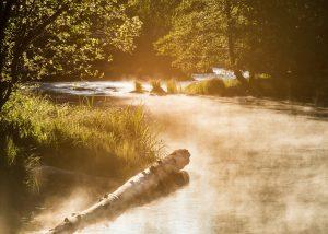 Vattendrag med dimma