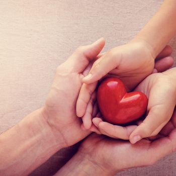 adult and child hands holiding red heart, health care love, give, hope and family concept
